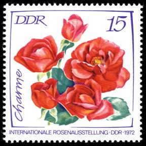 DDR Briefmarke Rose Charme Foto Wikipedia